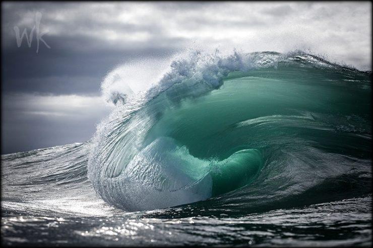 envie de surfer avec tes émotions ? venez en régulation émotionnelle tipi